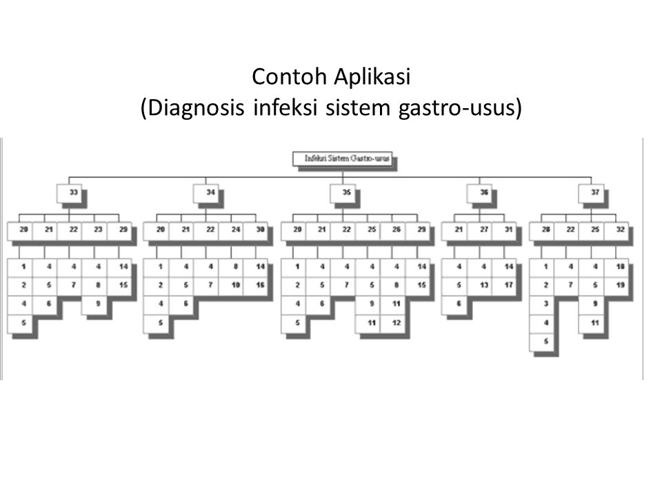 Contoh Aplikasi (Diagnosis infeksi sistem gastro-usus)