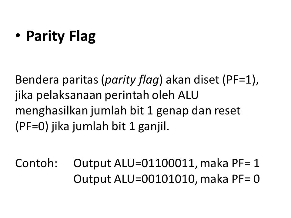 Parity Flag