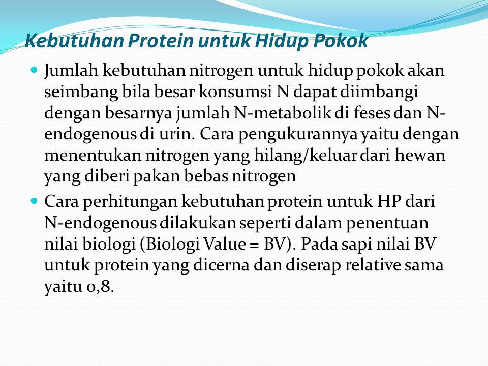 Kebutuhan Protein untuk Hidup Pokok
