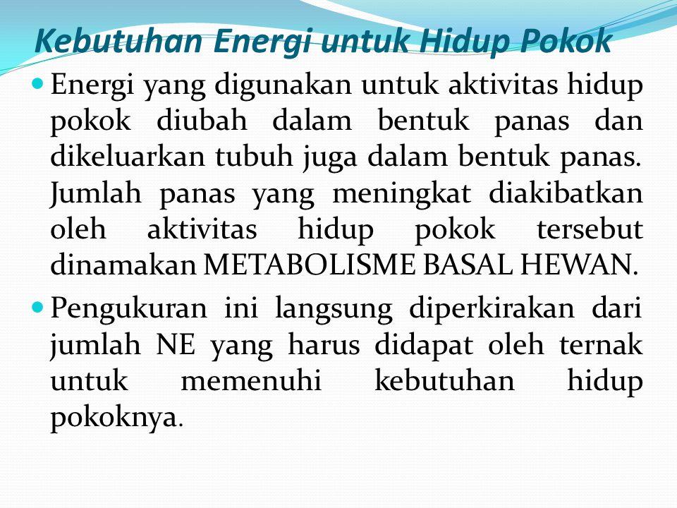Kebutuhan Energi untuk Hidup Pokok