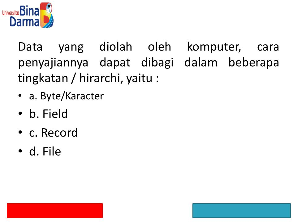 Data yang diolah oleh komputer, cara penyajiannya dapat dibagi dalam beberapa tingkatan / hirarchi, yaitu :