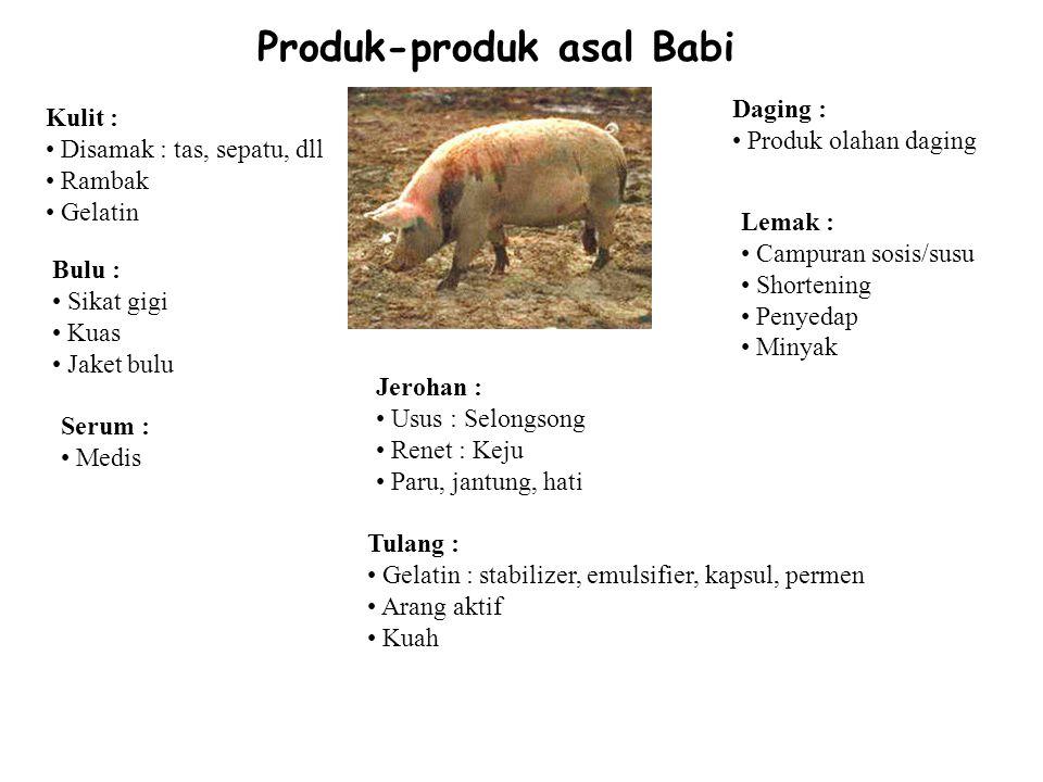 Produk-produk asal Babi