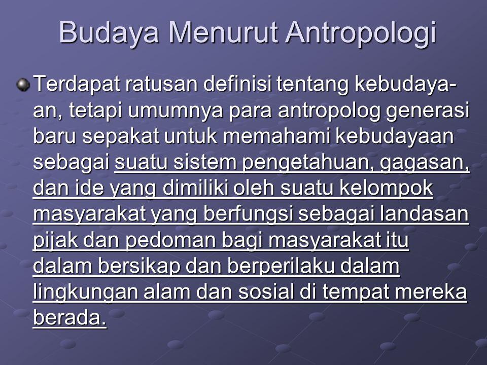 Budaya Menurut Antropologi