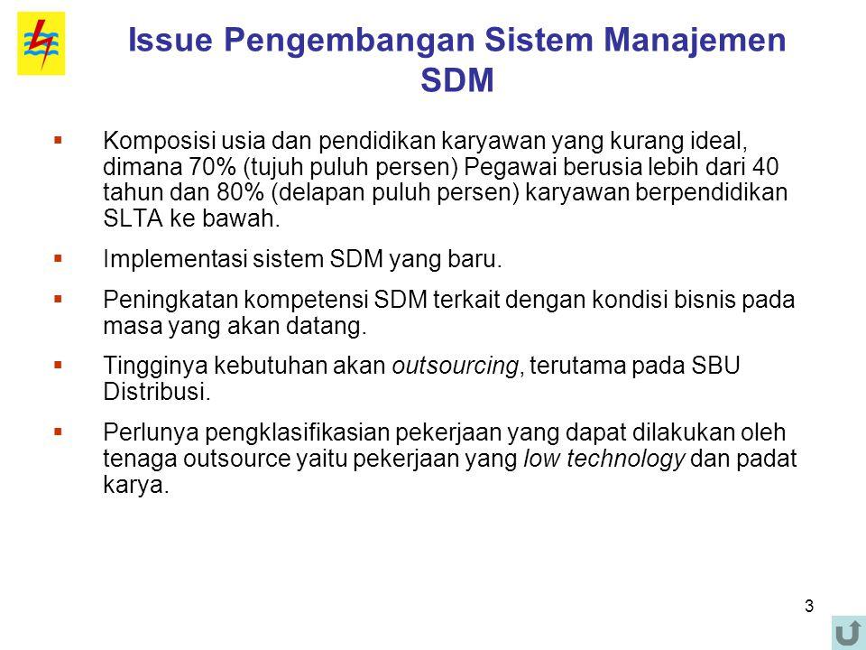 Issue Pengembangan Sistem Manajemen SDM