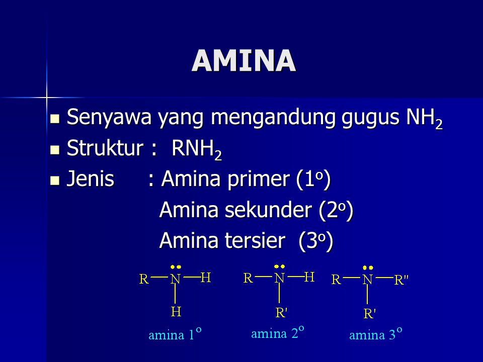 AMINA Senyawa yang mengandung gugus NH2 Struktur : RNH2