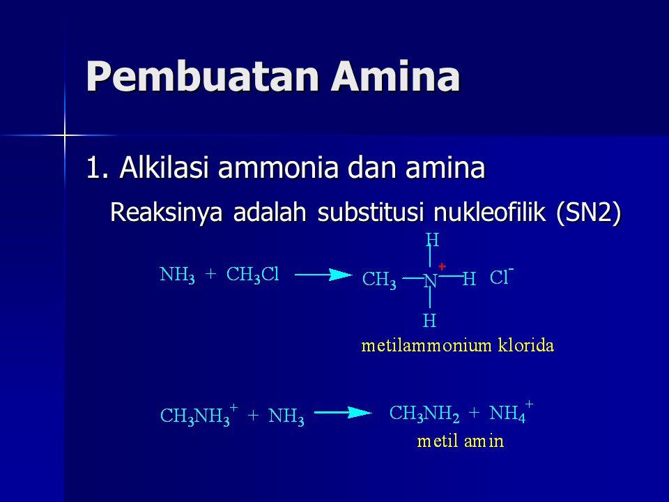 Pembuatan Amina 1. Alkilasi ammonia dan amina