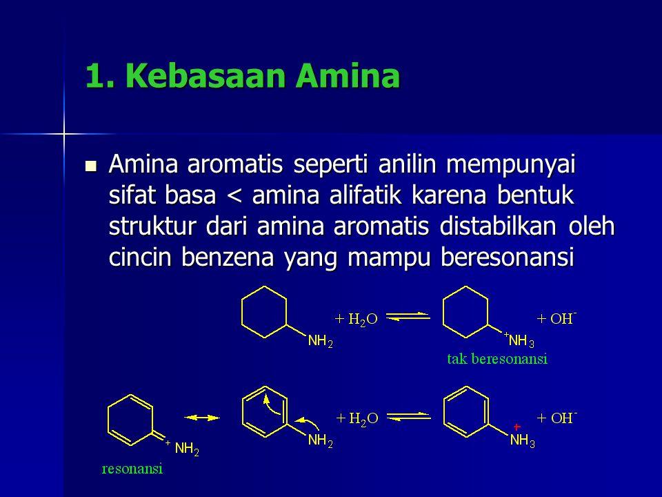 1. Kebasaan Amina
