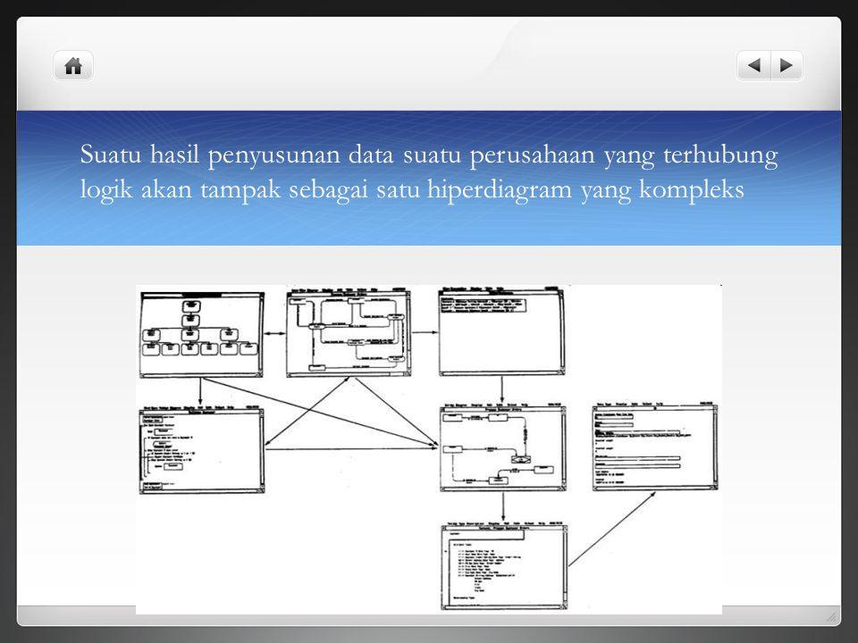 Suatu hasil penyusunan data suatu perusahaan yang terhubung logik akan tampak sebagai satu hiperdiagram yang kompleks