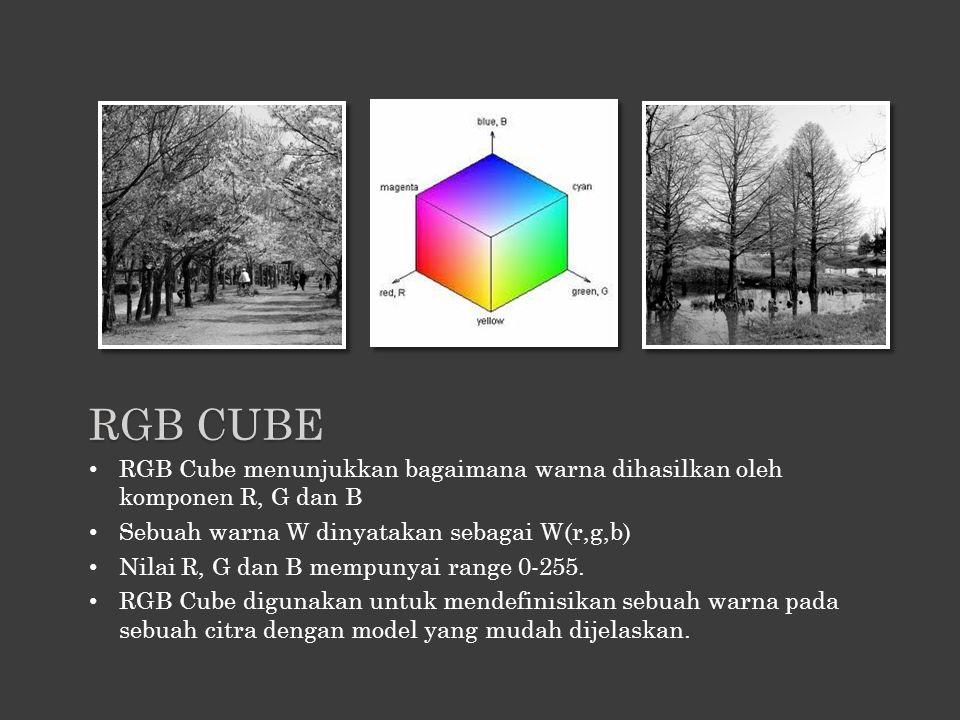 RGB CUBE RGB Cube menunjukkan bagaimana warna dihasilkan oleh komponen R, G dan B. Sebuah warna W dinyatakan sebagai W(r,g,b)