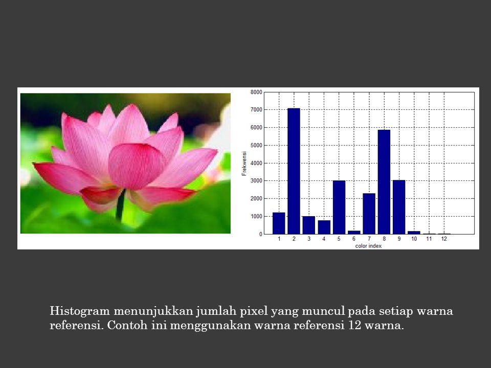 Histogram menunjukkan jumlah pixel yang muncul pada setiap warna referensi.