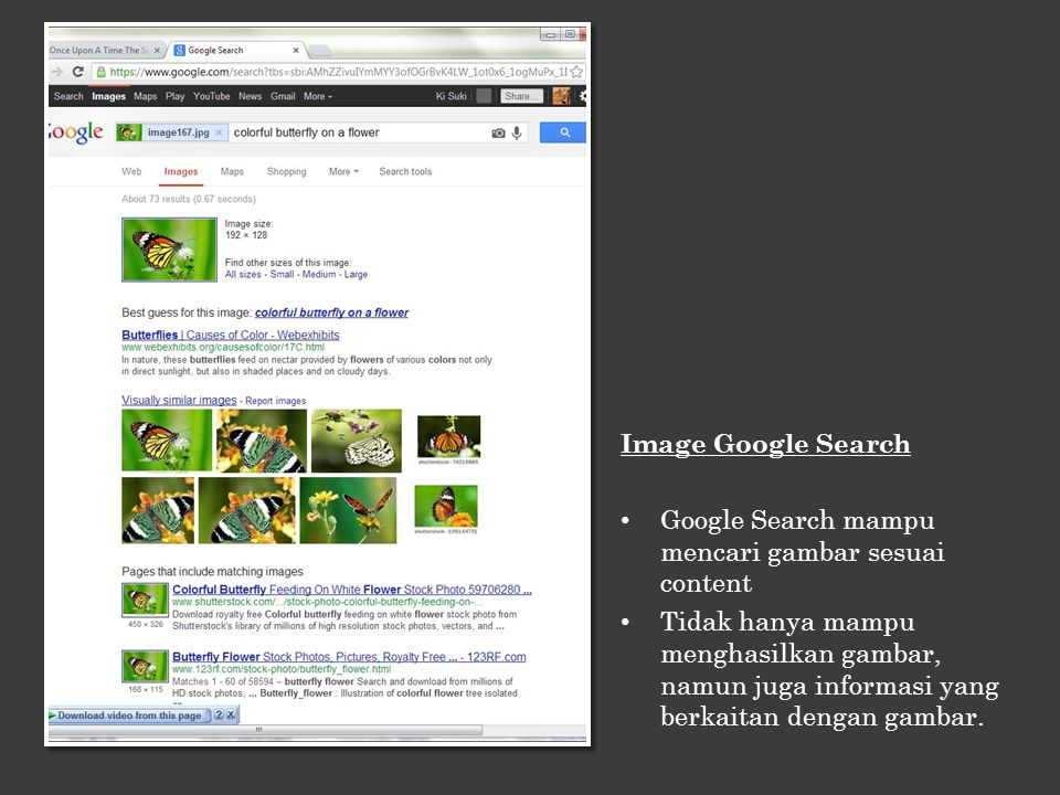 Image Google Search Google Search mampu mencari gambar sesuai content.