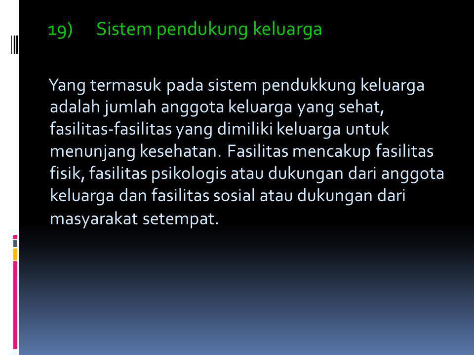19) Sistem pendukung keluarga