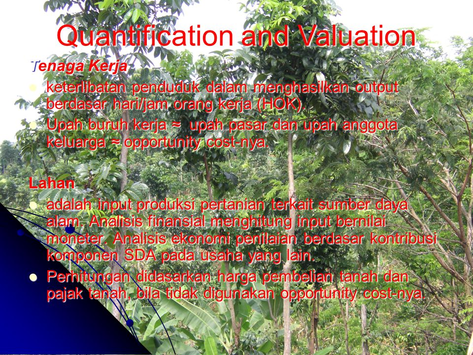 Quantification and Valuation