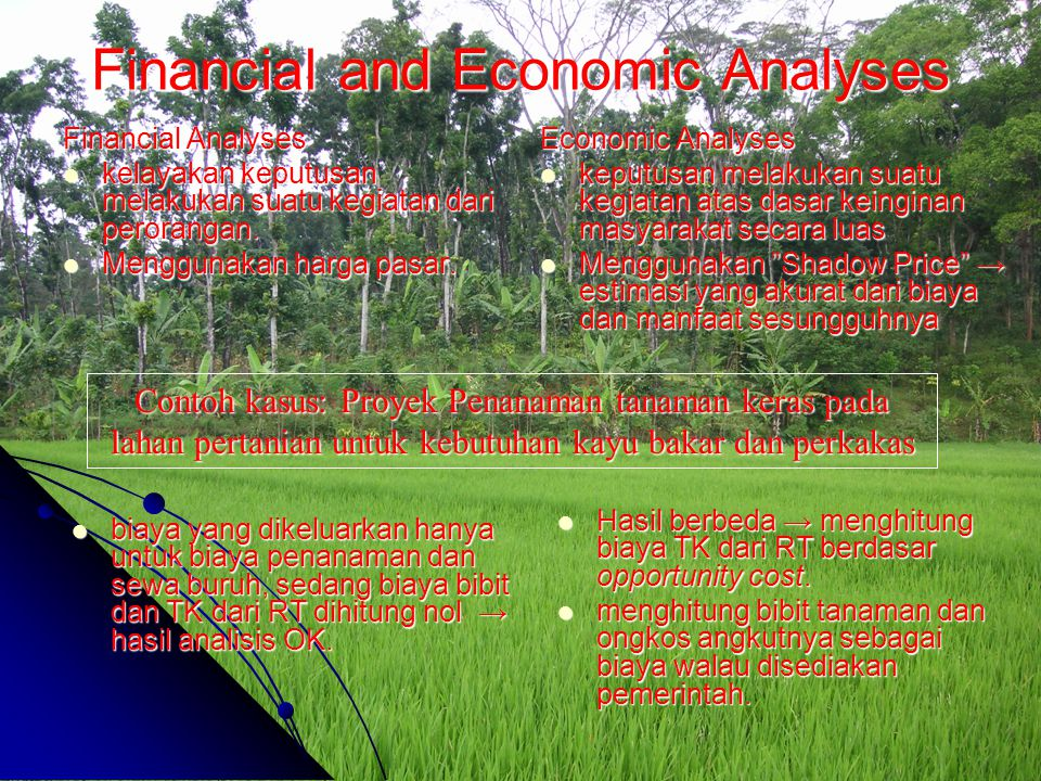 Financial and Economic Analyses