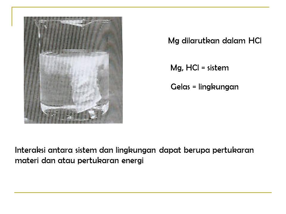 Mg dilarutkan dalam HCl