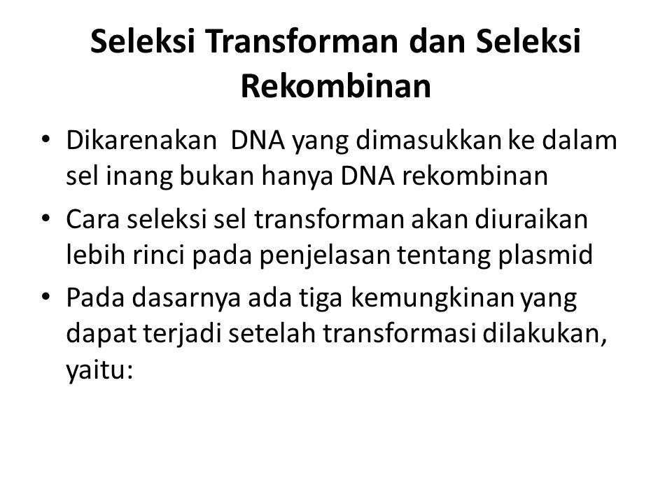 Seleksi Transforman dan Seleksi Rekombinan