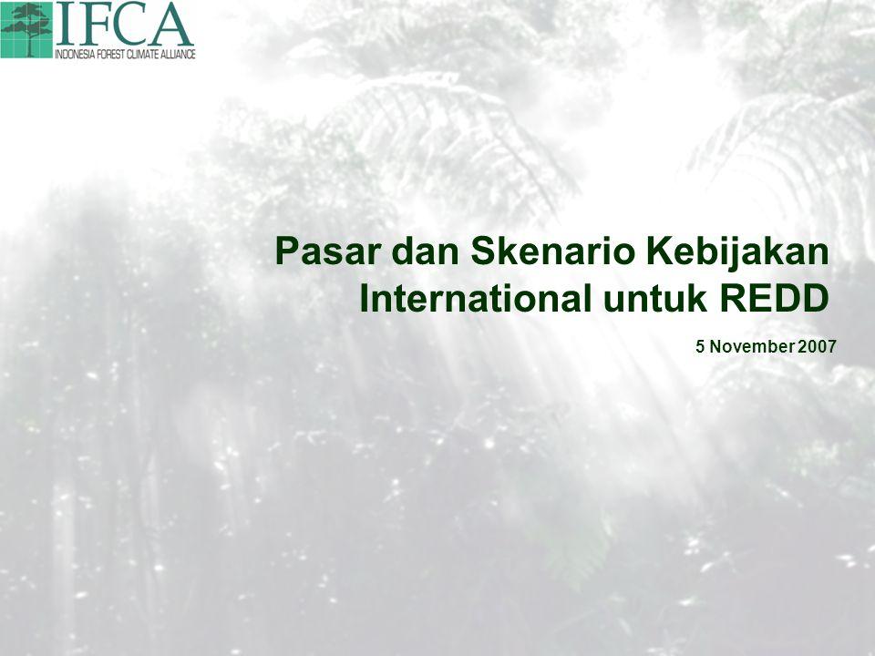 Pasar dan Skenario Kebijakan International untuk REDD