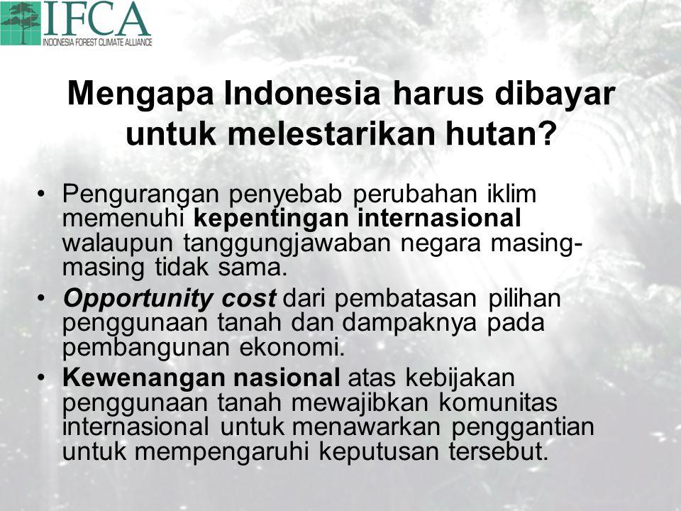 Mengapa Indonesia harus dibayar untuk melestarikan hutan