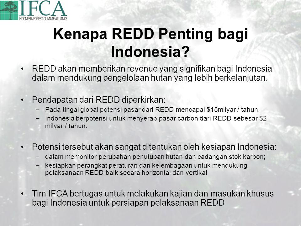 Kenapa REDD Penting bagi Indonesia