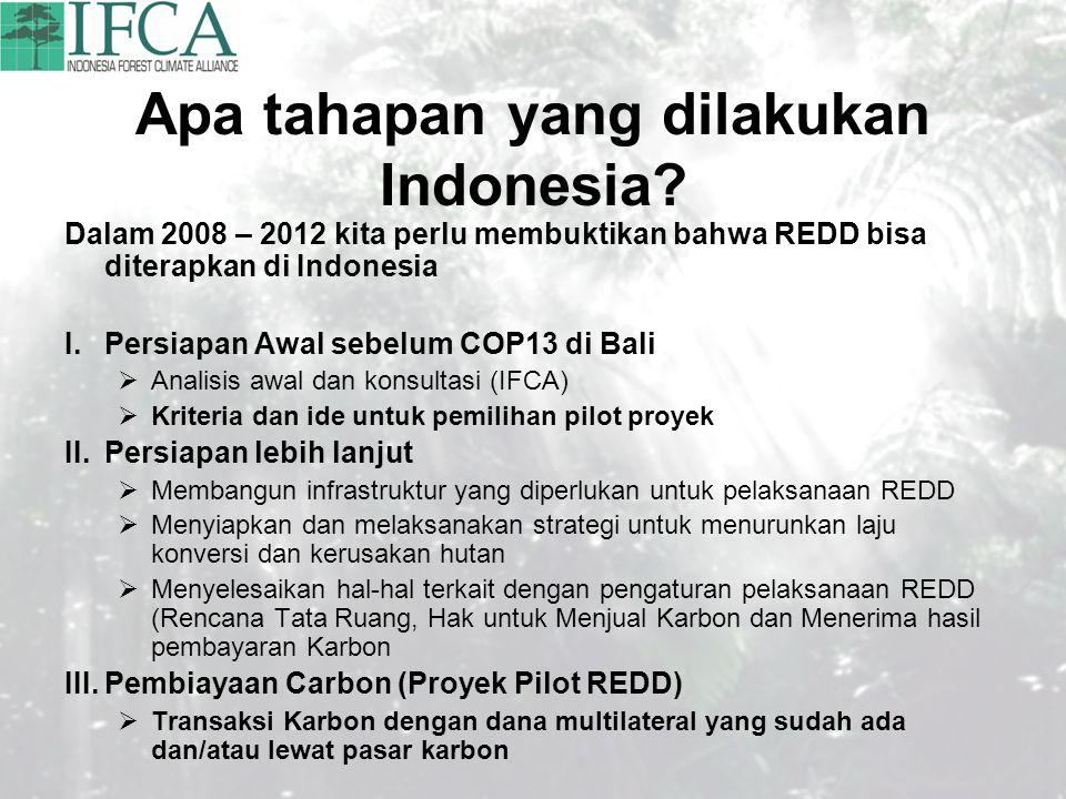 Apa tahapan yang dilakukan Indonesia