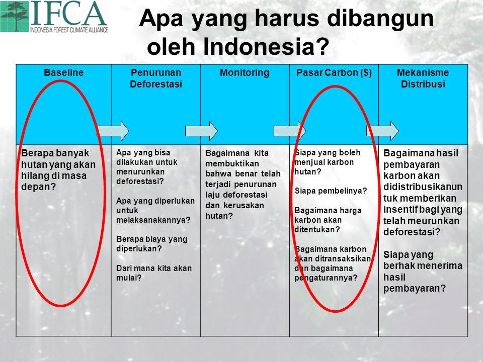 Apa yang harus dibangun oleh Indonesia