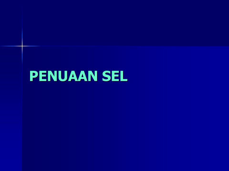 PENUAAN SEL
