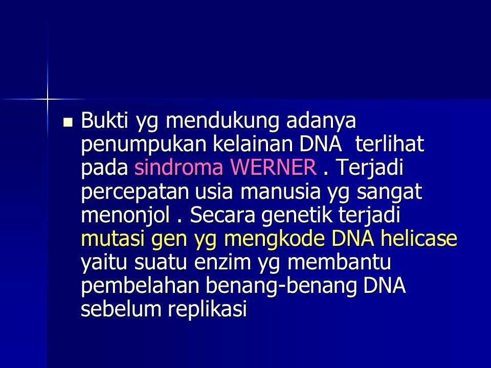 Bukti yg mendukung adanya penumpukan kelainan DNA terlihat pada sindroma WERNER .