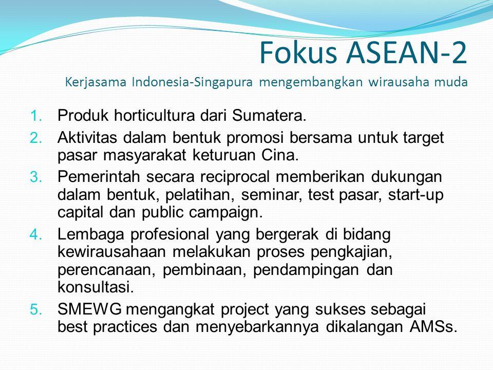 Fokus ASEAN-2 Kerjasama Indonesia-Singapura mengembangkan wirausaha muda