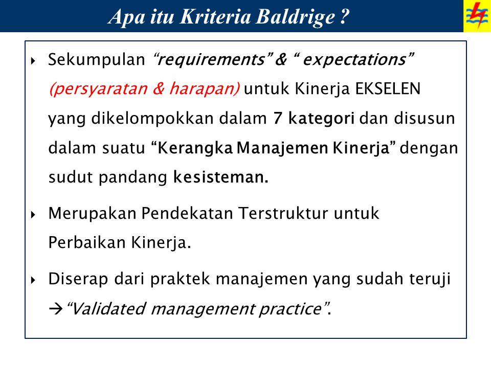 Apa itu Kriteria Baldrige
