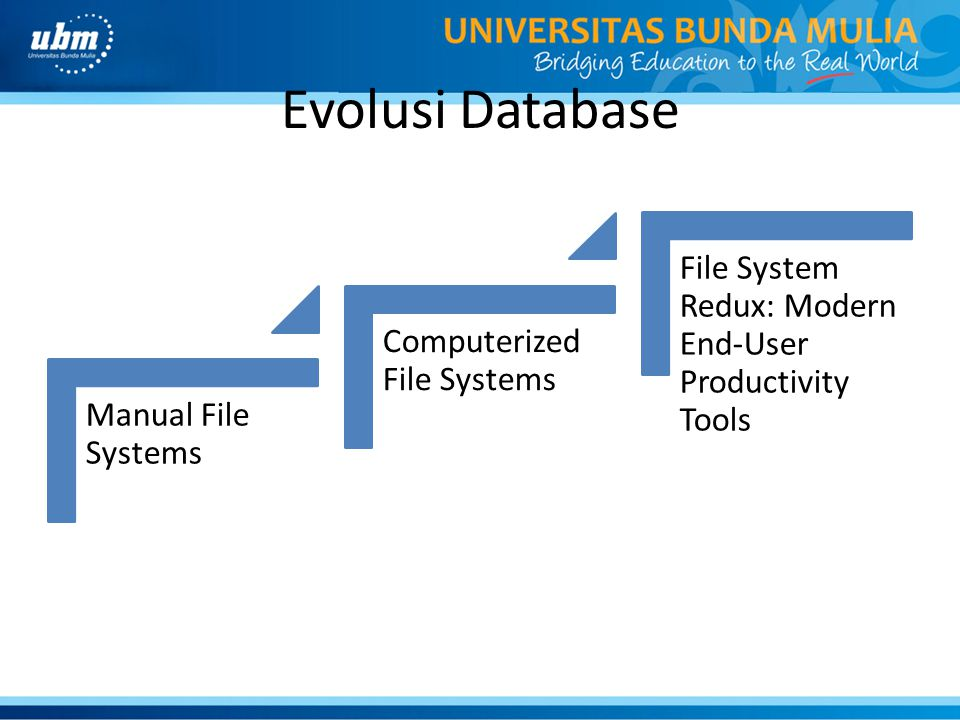 Evolusi Database File System Redux: Modern End-User Productivity Tools