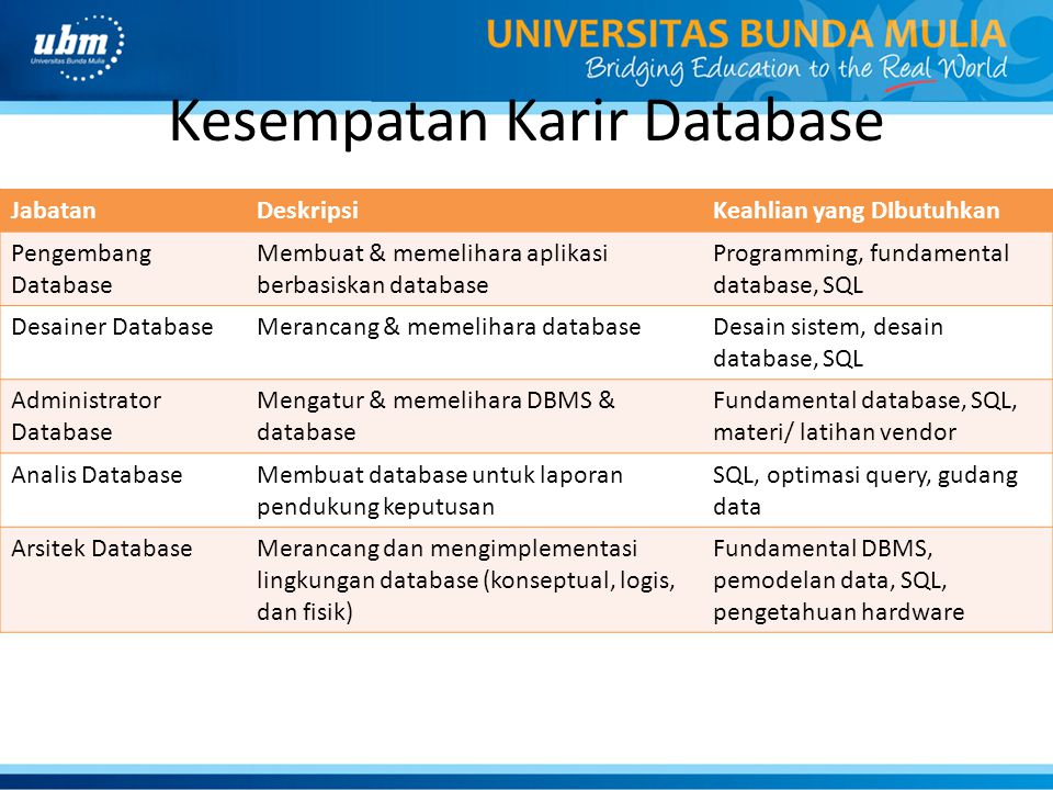 Kesempatan Karir Database