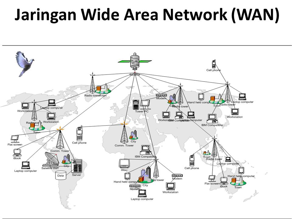 Jaringan Wide Area Network (WAN)