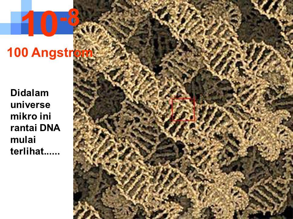 10-8 100 Angstrom Didalam universe mikro ini rantai DNA mulai terlihat......