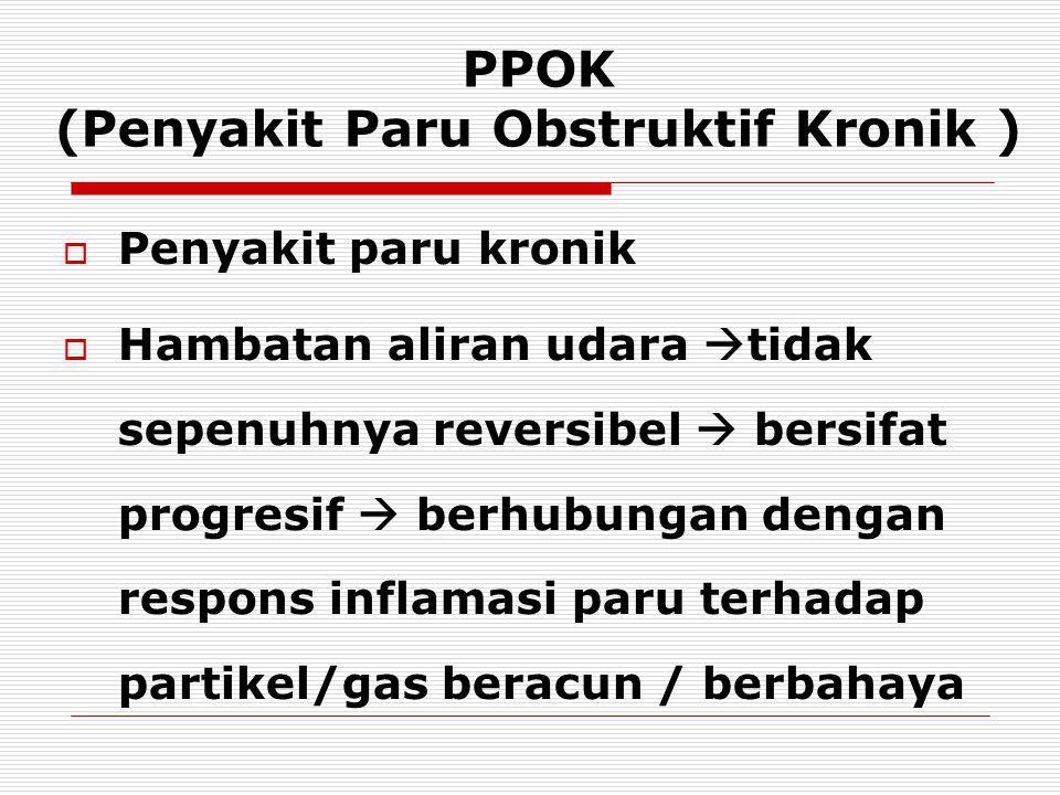 PPOK (Penyakit Paru Obstruktif Kronik )
