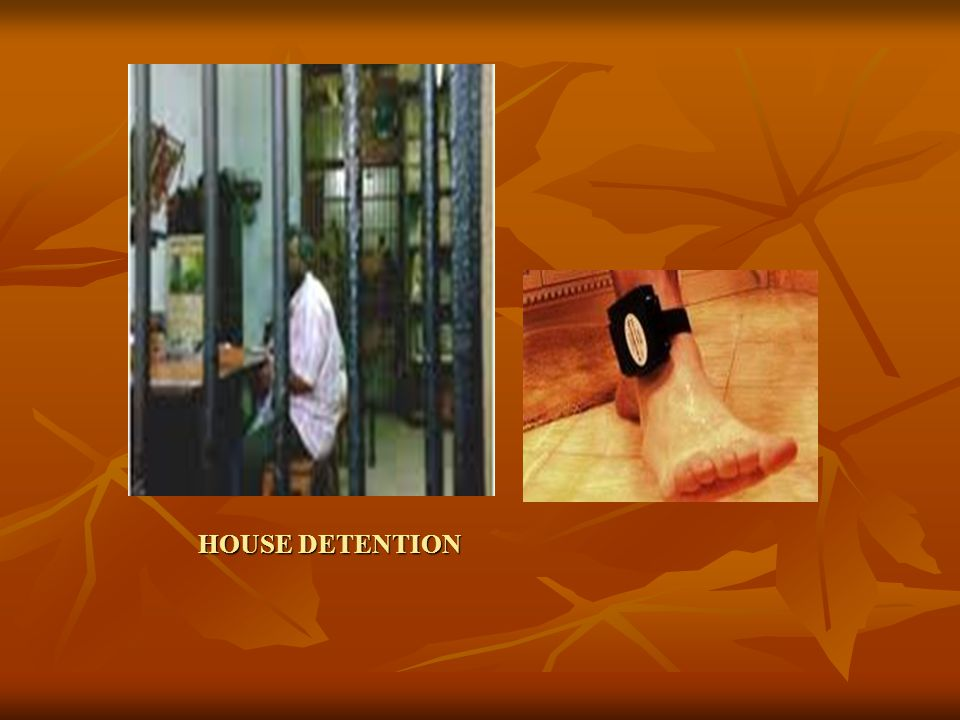 HOUSE DETENTION