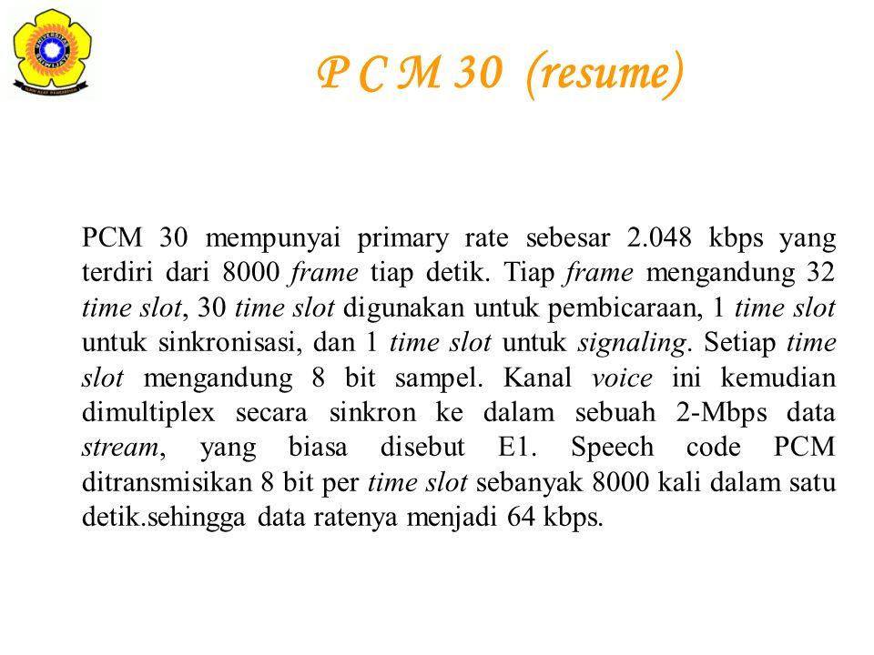 P C M 30 (resume)