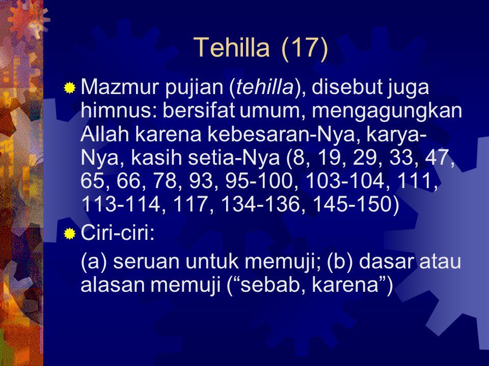 Tehilla (17)