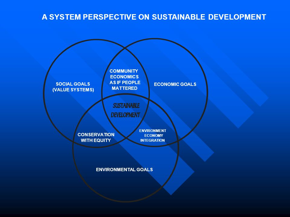 A SYSTEM PERSPECTIVE ON SUSTAINABLE DEVELOPMENT