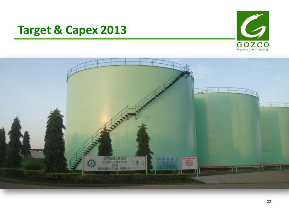 Target & Capex 2013 22