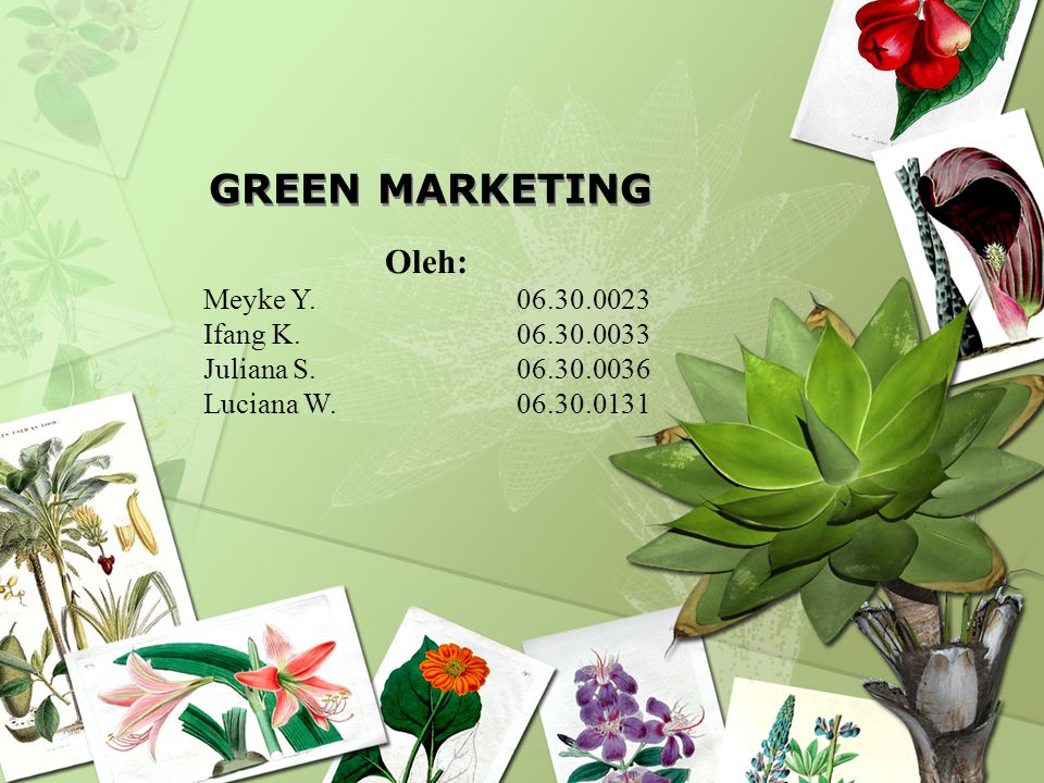 GREEN MARKETING Oleh: Meyke Y. 06.30.0023 Ifang K. 06.30.0033