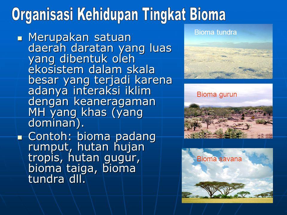 Organisasi Kehidupan Tingkat Bioma