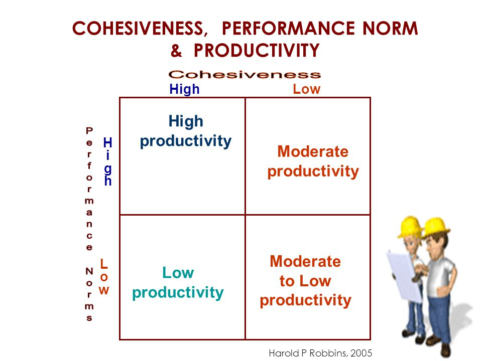 COHESIVENESS, PERFORMANCE NORM