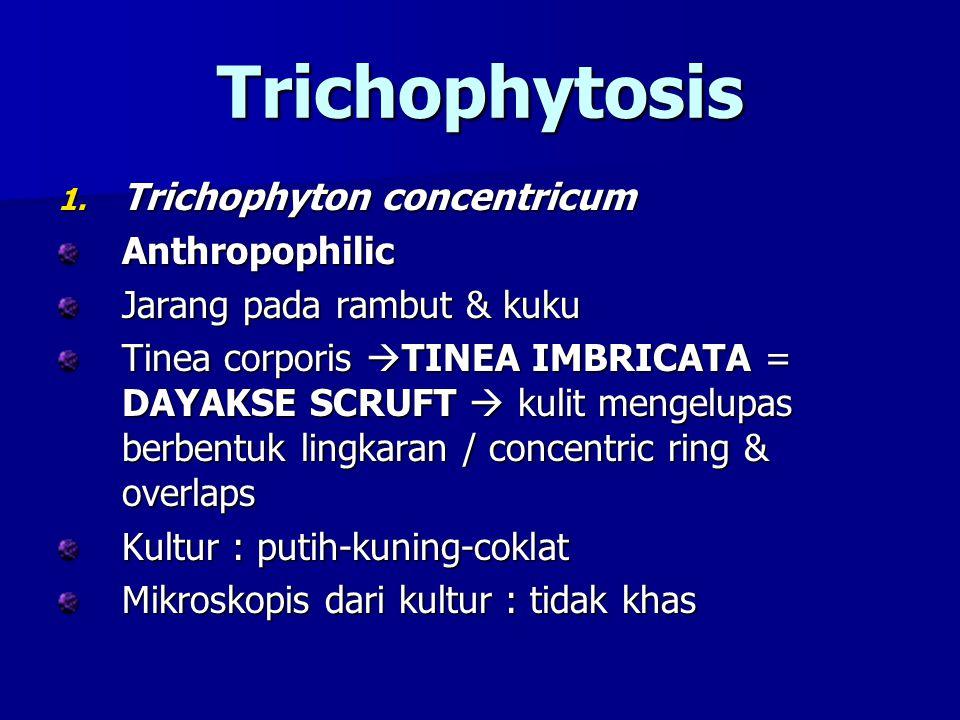 Trichophytosis Trichophyton concentricum Anthropophilic