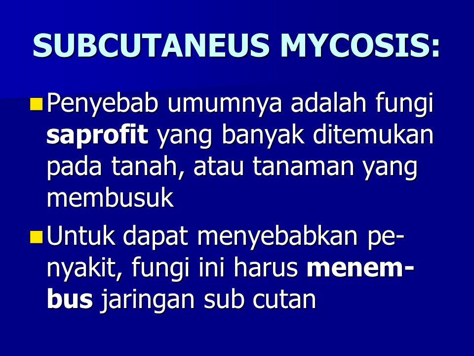 SUBCUTANEUS MYCOSIS: Penyebab umumnya adalah fungi saprofit yang banyak ditemukan pada tanah, atau tanaman yang membusuk.