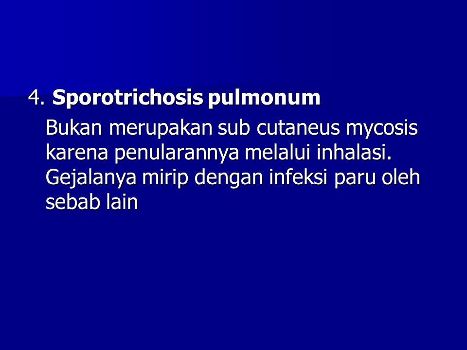 4. Sporotrichosis pulmonum