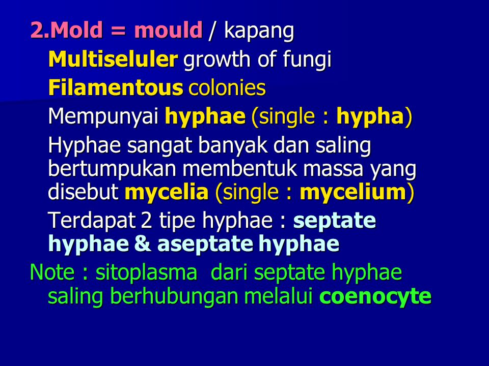 2.Mold = mould / kapang Multiseluler growth of fungi. Filamentous colonies. Mempunyai hyphae (single : hypha)