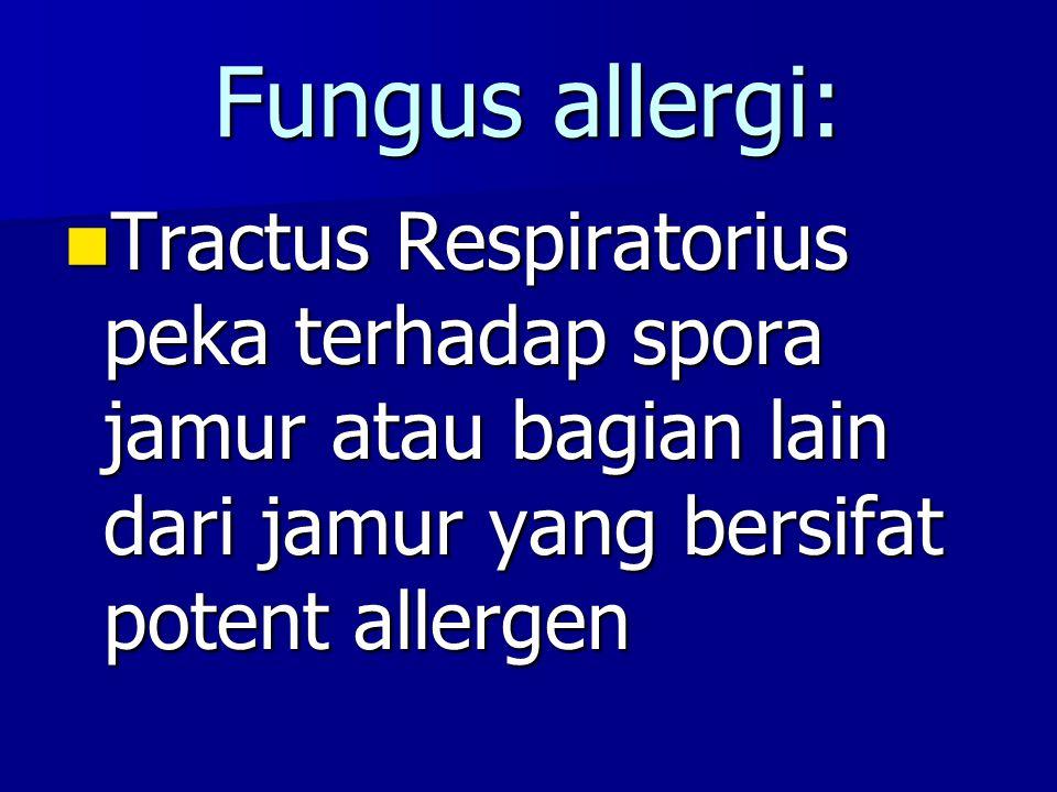 Fungus allergi: Tractus Respiratorius peka terhadap spora jamur atau bagian lain dari jamur yang bersifat potent allergen.