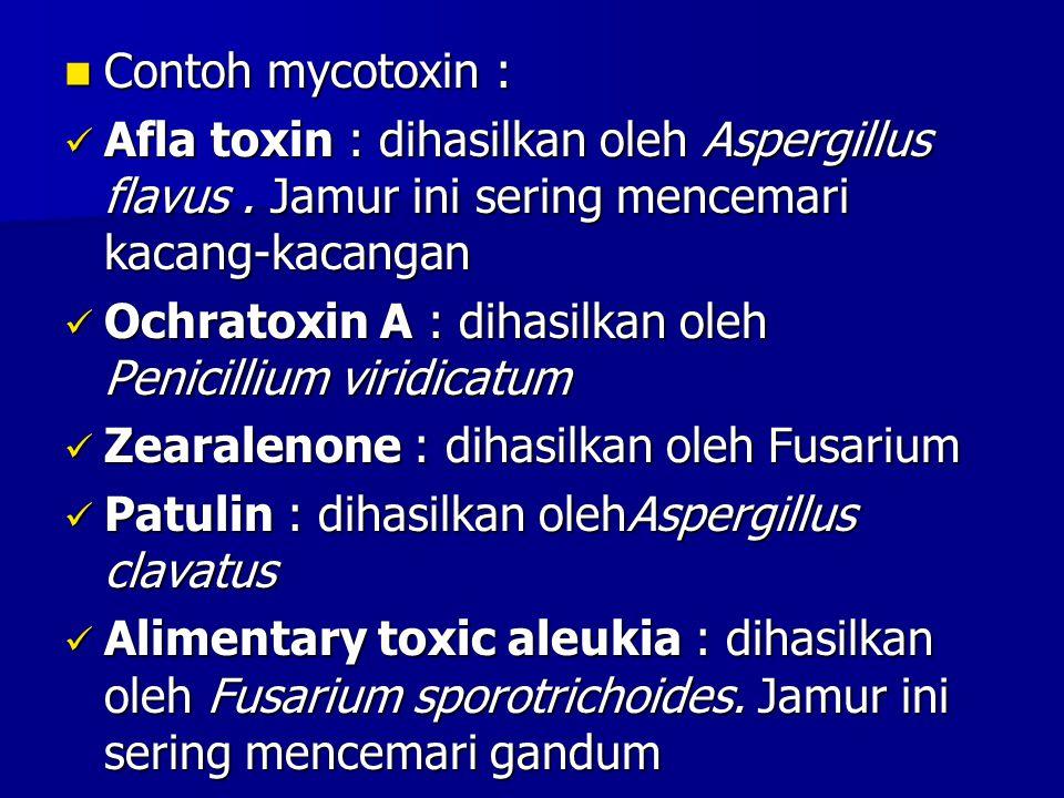 Contoh mycotoxin : Afla toxin : dihasilkan oleh Aspergillus flavus . Jamur ini sering mencemari kacang-kacangan.