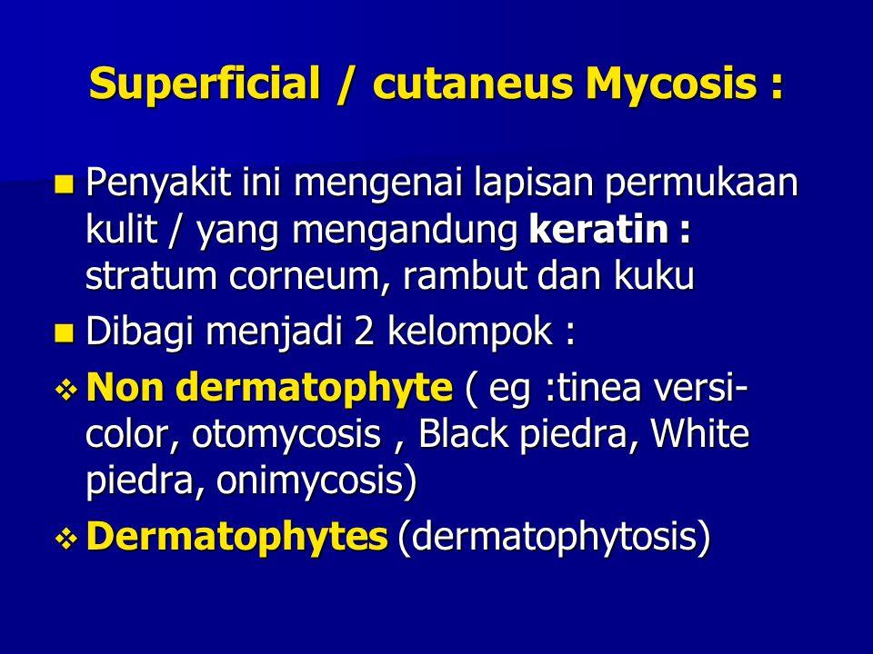 Superficial / cutaneus Mycosis :