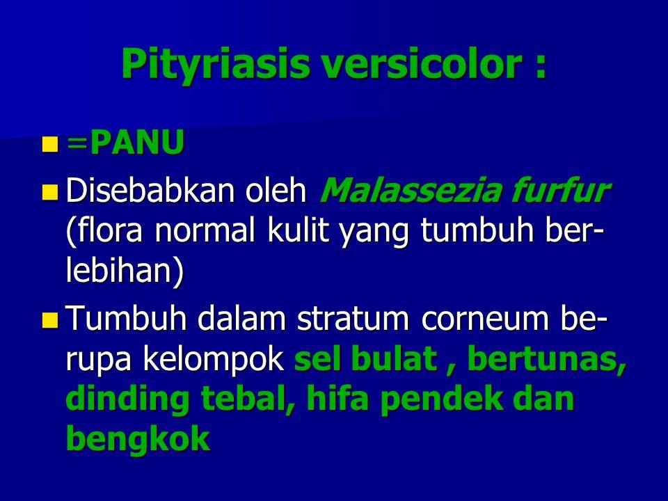 Pityriasis versicolor :